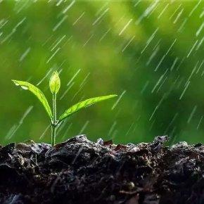 农药使用小知识,学会大有用途!